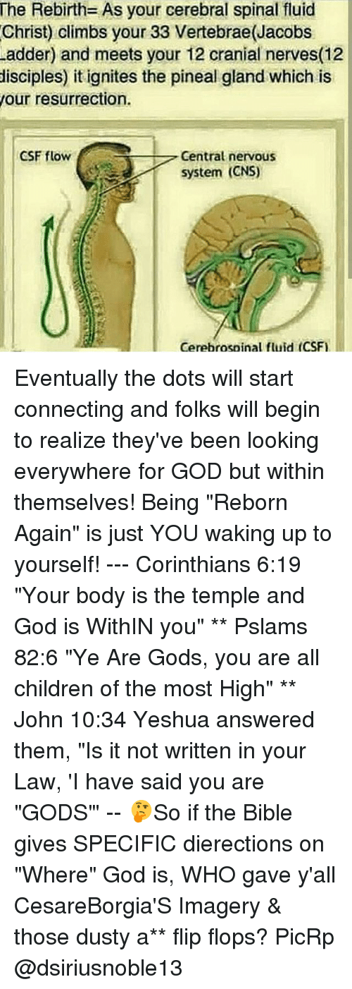 the-rebirth-as-your-cerebral-spinal-fluid-christ-climbs-your-33-14805197