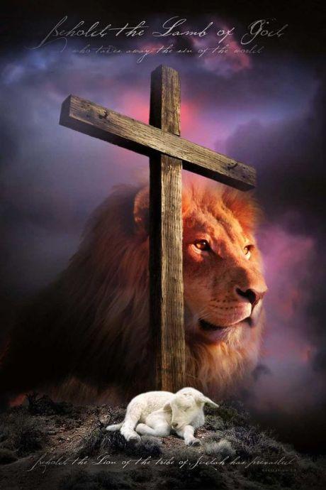 jesus law 6