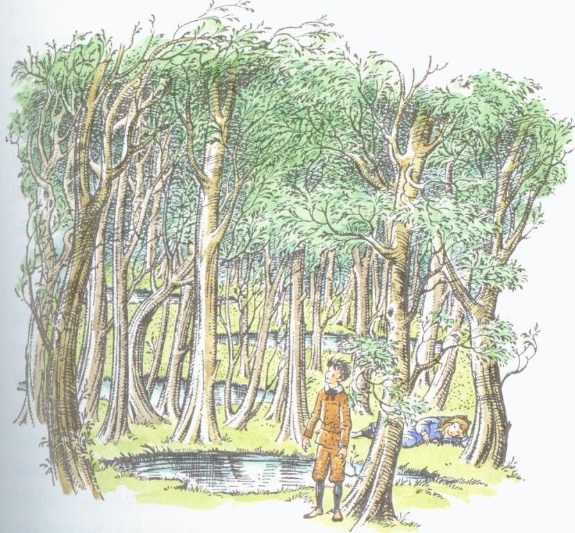 Woodbetweenworlds.jpg
