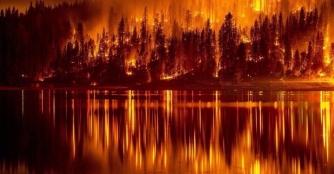 18062017_Portugal_fires_5.jpg-nggid042071-ngg0dyn-1100x800x100-00f0w010c010r110f110r010t010
