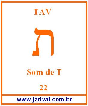 tav22